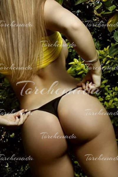 gay escort viareggio donna escorts